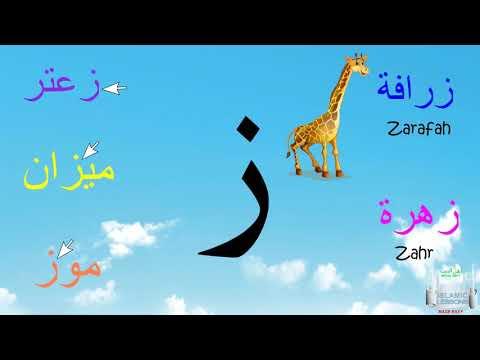 Arabic Alphabet Series - The Letter Za - Lesson 11