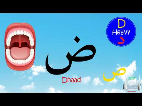 Arabic Alphabet Series - The Letter Dhaad - Lesson 15