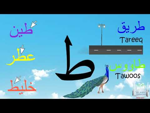 Arabic Alphabet Series - The Letter Toh - Lesson 16