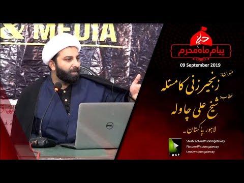 [Clip] زنجیر زنی کا مسئلہ Zanjeer Zani Ka Masla | Shaykh Ali Chawla | Urdu