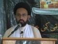 Hazrat Zainab ki siyasi Seerat - H.I. Sadiq Raza Taqvi - Urdu