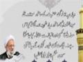 ولی فقیہ کی اطاعت امام حسین کی اطاعت ہے   Ayatullah misbah yazdi - Farsi Sub Urdu