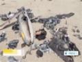 [24 Aug 2014] IRGC releases footage of Israeli drone shot down near Natanz - English